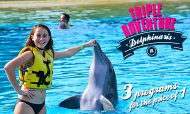 Swim with dolphins in Riviera Maya - Triple Adventure Program