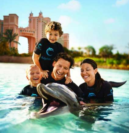 Dolphin Cay - One of the Best Places to Swim with Dolphins in the World
