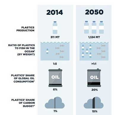 More Plastic Than Fish in Sea by 2050 Source Ellen Macarthur - How Marine Pollution Affects Sea Life