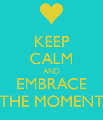keep calm and embrace the moment-How to Swim with Dolphins [Step-by-Step WikiHow-Style Guide]
